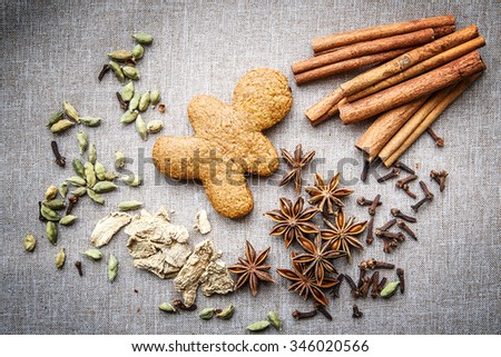 biscuit star anise Cardamom nutmeg cinnamon ginger clove spice canvas - stock photo