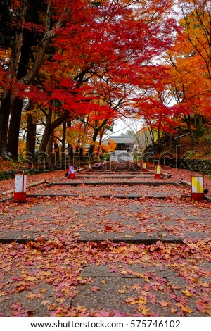 Bishamon-do temple in Autumn