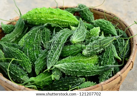 Bitter gourd in the basket. - stock photo