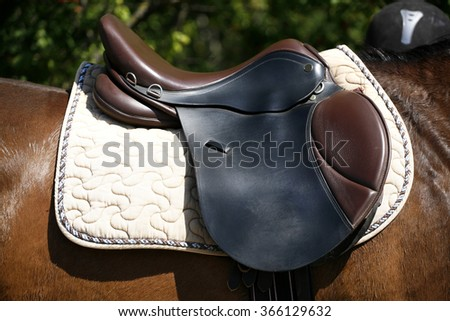 Black and brown leather saddle on back of a horse - stock photo
