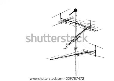 Black and white Antenna on white background - stock photo