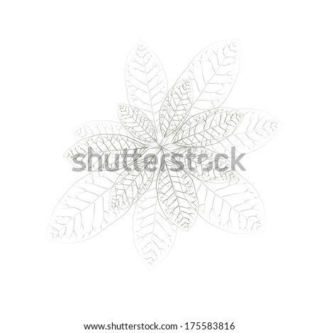 black and white bouquet flowers of leaves. Raster - stock photo