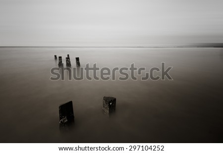 Black and white color of wood stump at the beach with motion blur effect on the sky