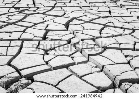 Black and White Dry cracked earth background - stock photo