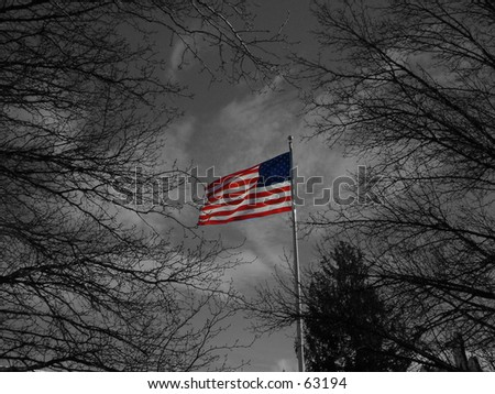 Black and white flag - stock photo