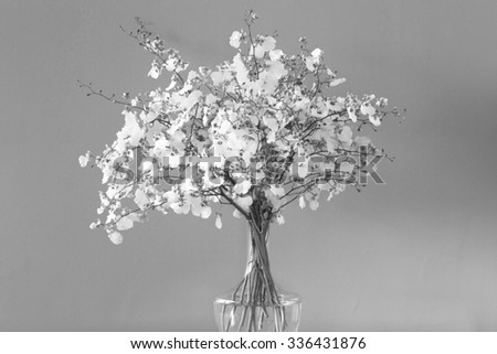 Black and white flowers - stock photo