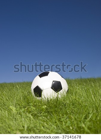 Black and white football in green grass. - stock photo