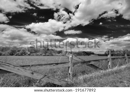 Black and white image of a horse farm on a spring day