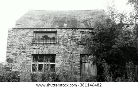 Black and white image on an abandoned house. A third of the front is obscured from view by a large tree. - stock photo