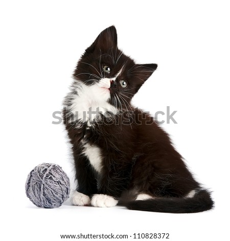 Black-and-white kitten with a woolen ball on a white background - stock photo