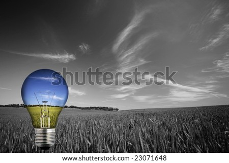 black and white landcape with colorful blue light bulb - environmental concept - stock photo