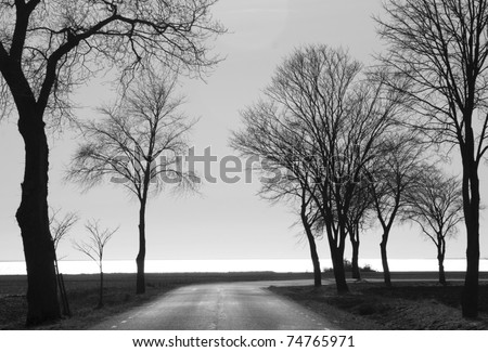 Black and white landscape - stock photo