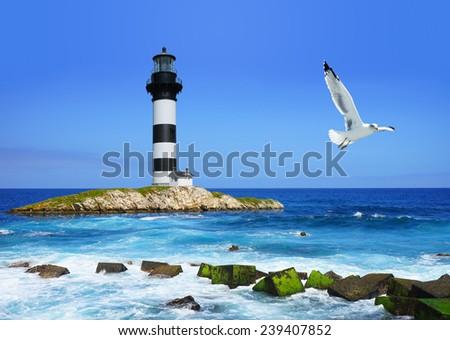 black and white lighthouse on rocks, sea  coast, flying seagull - stock photo