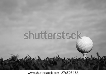 Black and white of golf ball on tee  - stock photo