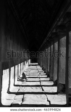 Black and white of walkway inside Ankor Wat temple in siem reap, Cambodia.
