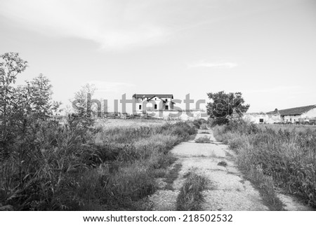 Black and white, old, abandoned, ruined house in the field  - stock photo