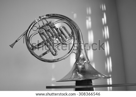 black and white. old musical instrument - stock photo