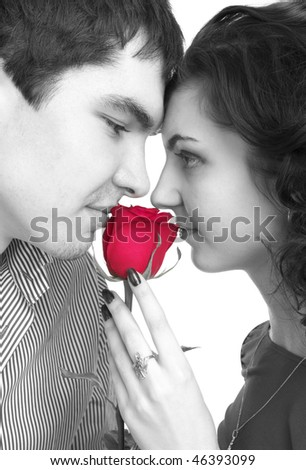 Black and white portrait of beautiful couple with red rose - stock photo