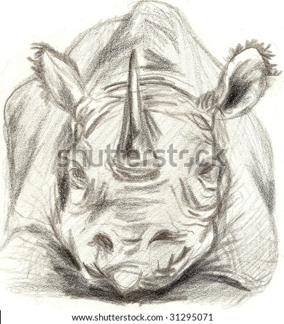 Black and white Rhinoceros sketch pointed straight at the viewer, looking angry - stock photo