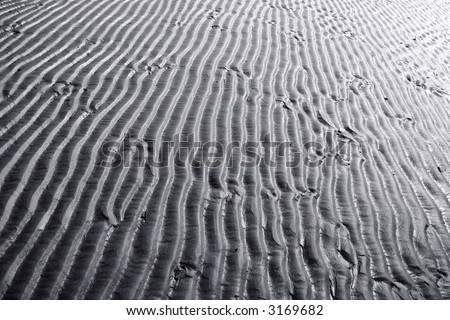 Black and white sand ripples.