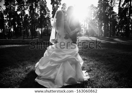Black and white silhouette of newly married couple hugging at park in sun rays - stock photo