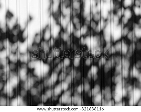 Black and white tree shadow on the wall - stock photo