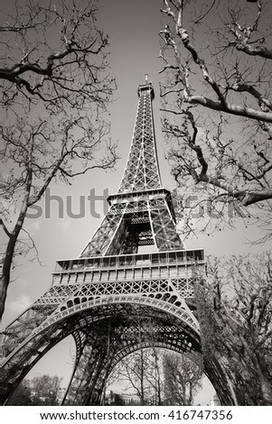 Black and White vertical view of the Eiffel Tower through tree branches on the Champs de Mars, Paris, France - stock photo