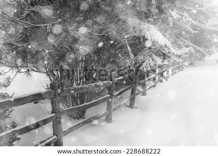Black and white winter landscape with rural fence and falling snow - stock photo