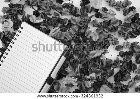 Black and wihite, Dried flower with book and pen on white background - stock photo