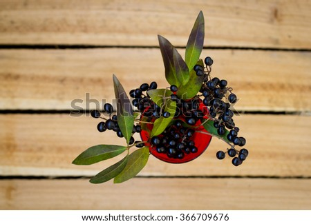 black berries in red vase on wooden background
