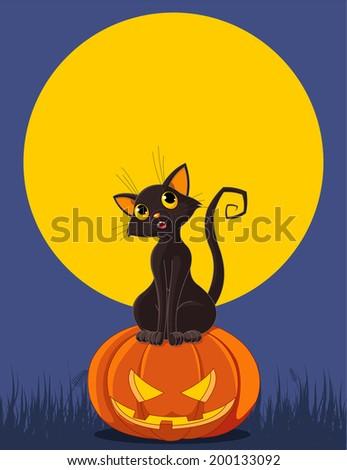 Black cat is sitting on Halloween pumpkin. Greeting card/invitation. Raster version.   - stock photo