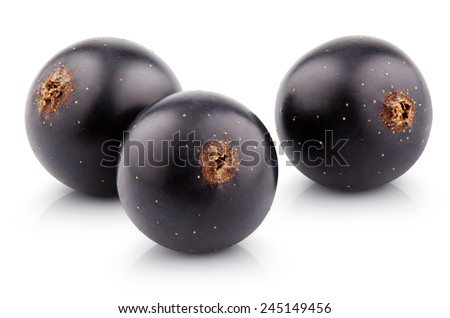 Black currant berry isolated on white with clipping path - stock photo