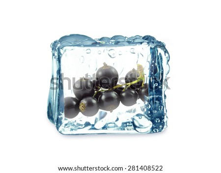 Black currant in ice cube isolated on white - stock photo