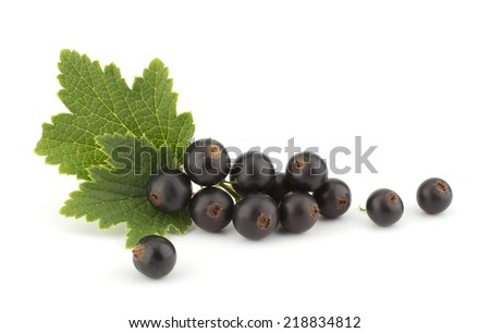 Black currant with green leafs isolated on white background closeup - stock photo