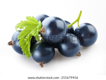Black currant with leaves isolated on white - stock photo