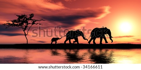 Black elephant silhouettes by a river. - stock photo