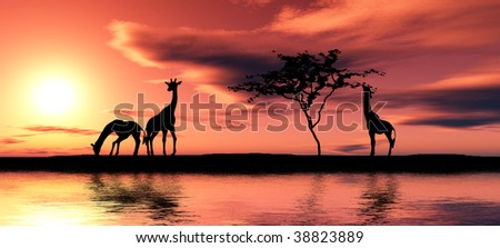 Black giraffe silhouettes by a river. - stock photo