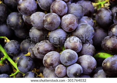Black Grape - stock photo