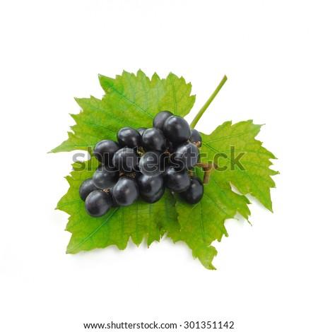 Black grape isolated on white background (Fruit) - stock photo