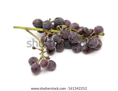 black grapes on a white background - stock photo