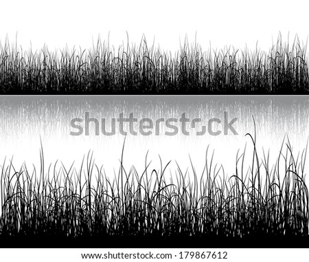 Black grass isolated on white background. Raster illustration. - stock photo