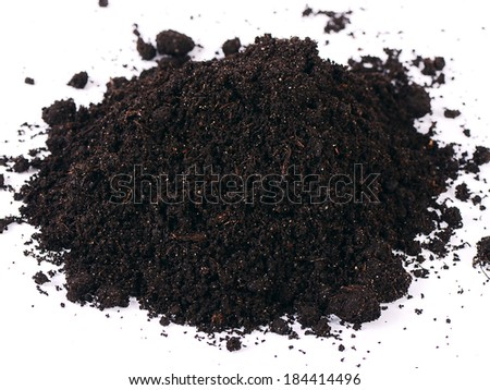 Black ground closeup isolated on white background