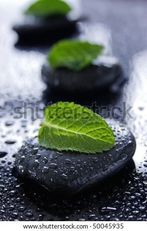 Black healing stones with green leaves on a wet black surface