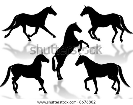 Black horse silhouettes in different poses and attitudes - stock photo