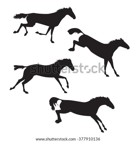 Black horses on isolated background. Set of wild horses.  horse collection. Silhouettes of horses. Horses running, jump