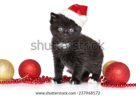 Black Kitten in Santa Red hat and Christmas balls on white background - stock photo