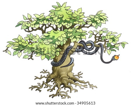 Black mamba hidden on a tree. - stock photo