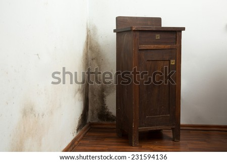 Black mold buildup in the corner of an old house - stock photo