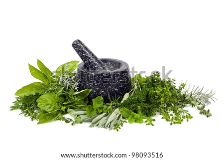 Black mortar and pestle with fresh picked herbs, over white background. - stock photo