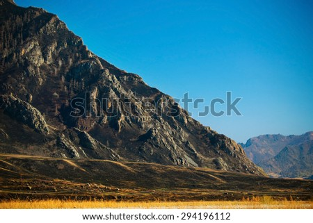 black mountain (forest after fire) (Altai, Russia) - stock photo